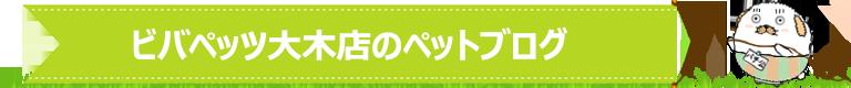 ペッツマックス八幡東店のペットブログ