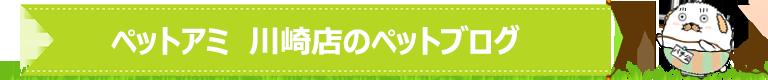 ペットアミ 川崎店のペットブログ