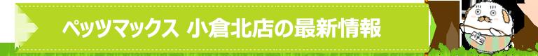 ペッツマックス 小倉北店の最新情報