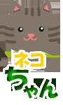 ネコちゃん(子猫)