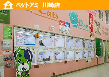 ペットアミ 川崎店