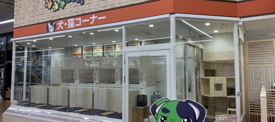 いよいよ8/1東水巻店OPEN