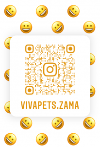 InstagramQR_7.png